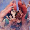 Chi È Terence McKenna: un Pioniere della Cultura Controcorrente Psichedelica