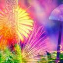 Analizziamo i 4 Principali Componenti dei Funghi Magici