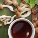 Il Modo Più Semplice per Preparare il Tè ai Funghi Magici