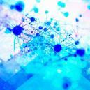 La Psilocibina Favorisce La Crescita di Nuove Cellule Cerebrali
